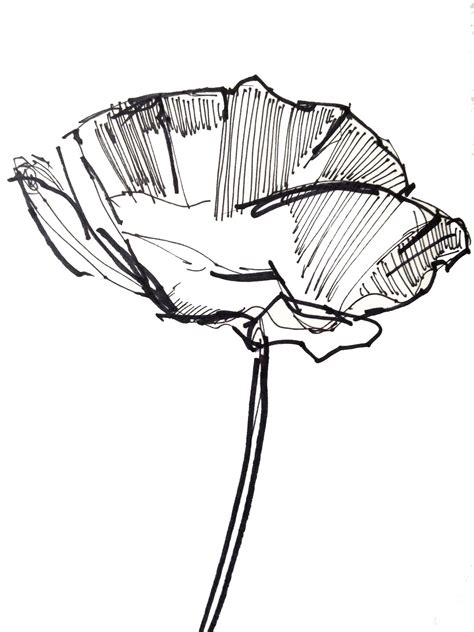 Easy Sketches Of by Easy Sketches Of Flowers Clipart Best