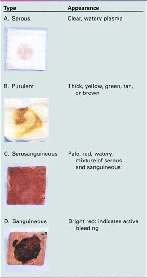 serous drainage color serous drainage color 28 images emergency medicine