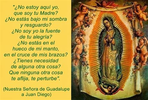 imagenes feliz dia de la virgen de guadalupe save our souls feliz dia de la virgen de guadalupe