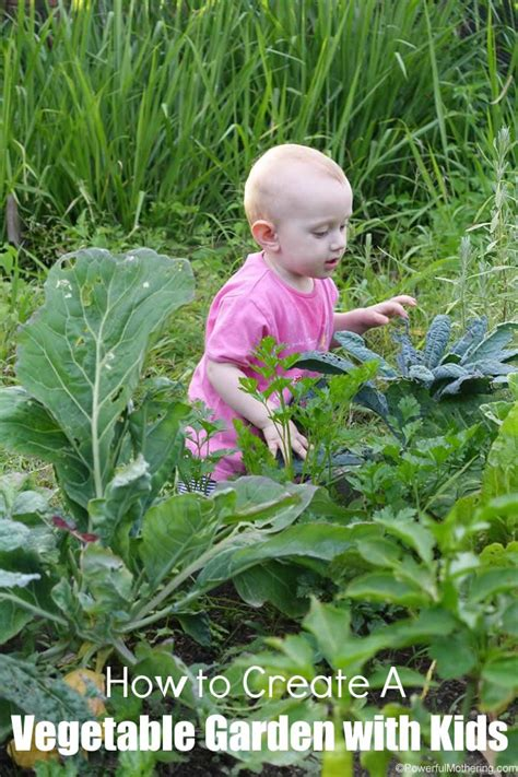 how to create a vegetable garden with