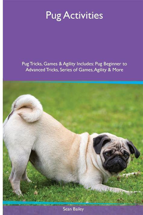 pug activities pug activities pug tricks agility includes pug beginner to advanced tricks