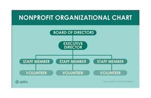 Staff Organogram Template by Sle Non Profit Organizational Chart 6 Documents In