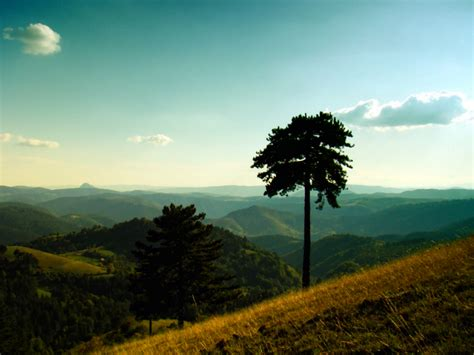 image gallery serbia landscape