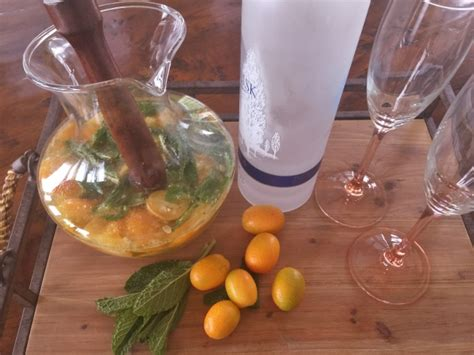 mojito cocktail vodka kumquat vodka mojitos recipe live love laugh food