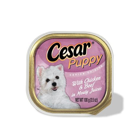 cesar food cesar food puppy breeds picture