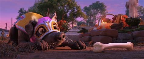 coco full movie online in praise of memory coco full movie review