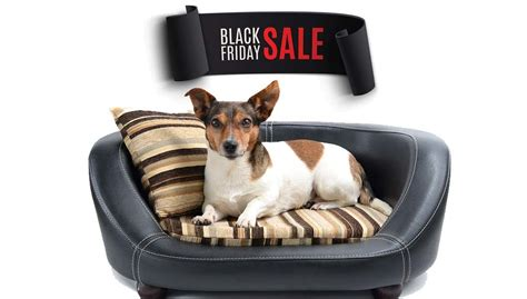 black friday bed deals 47 best black friday dog beds deals to look out for and current ones