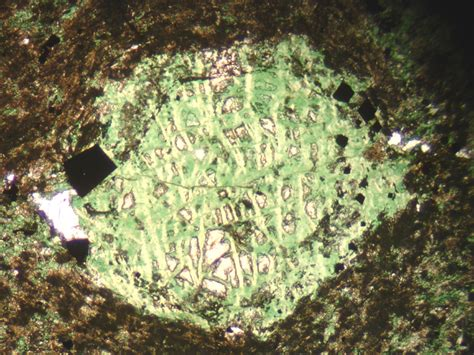 chlorite in thin section pseudomorphs