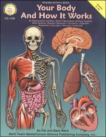 your body and how it works 021654 images rainbow