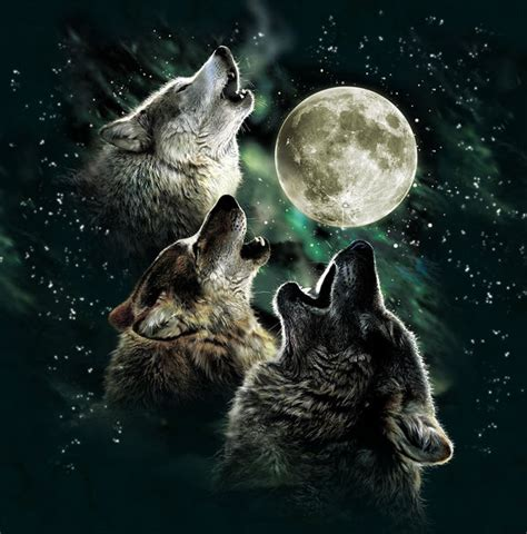 3 Wolf Moon Meme - three wolf moon by antonia neshev decalgirl