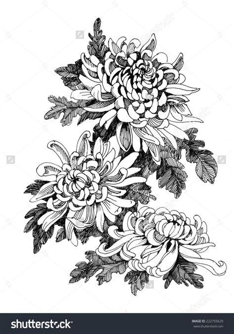 Tattoo Flower Vector | hand drawing chrysanthemum flower vector illustration