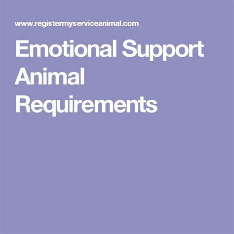 how to register your as an emotional support animal 102 best emotional support animal esa images on doggies service dogs and