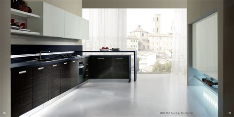 Kitchen Units Design Interior Exterior Plan Veneered Kitchen Concept For A Glossy Theme