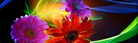 colorful definition 3d wallpapers colorful abstract flowers wallpaper desktop