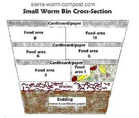 Garden Worms Types - 10 helpful worm composting bin ideas and plans the self sufficient living