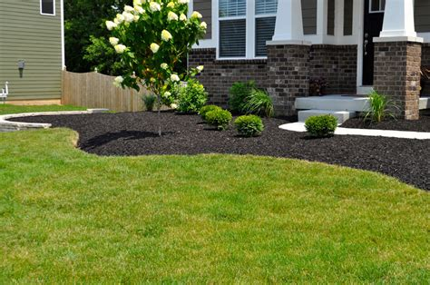 Black Colored Mulch Indianapolis Mulch Mccarty Mulch Black Landscaping