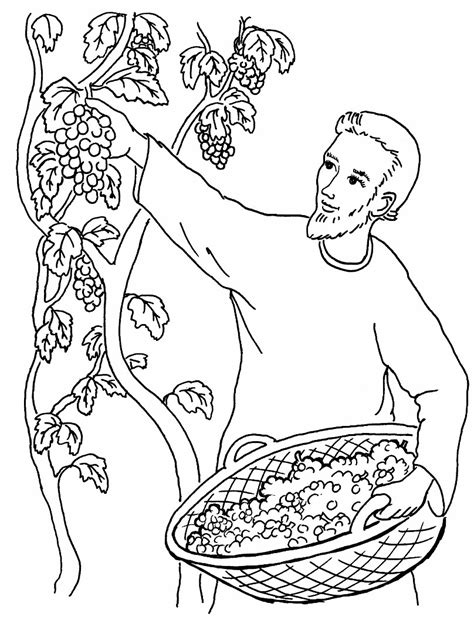 1000 images about coloring bible nt gospels parables