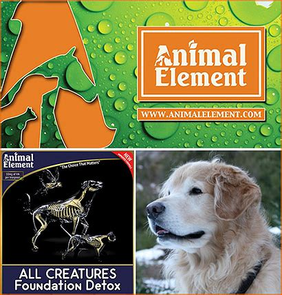 Animal Element Detox by Detoxification Products For Dogs
