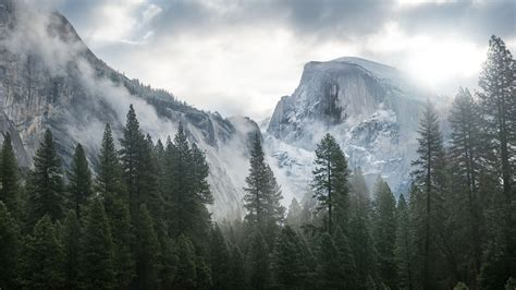 apple yosemite wallpaper for ipad 5 wallpapers yosemite pour mac os x et ipad