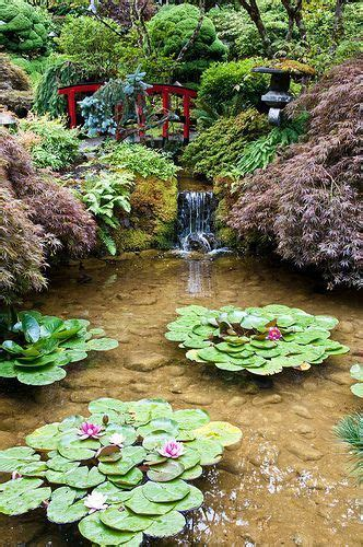 zen water garden 33 best my future koi pond ideas images on pinterest