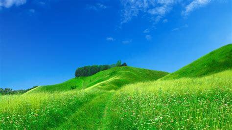 beautiful com beautiful field 429835 walldevil