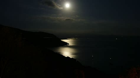 in the moonlight which is beneath moonlight echoes