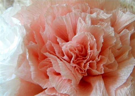 creare fiori di carta crespa come creare fiori di carta crespa fiori di carta