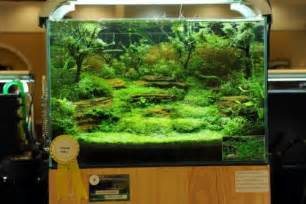 Aquascape Style Nature Aquarium Aquascaping Planted Aquariums Aqua