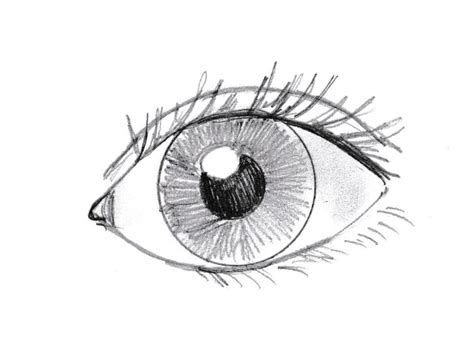 A Drawing Of An Eye by How To Draw An Eye Bell