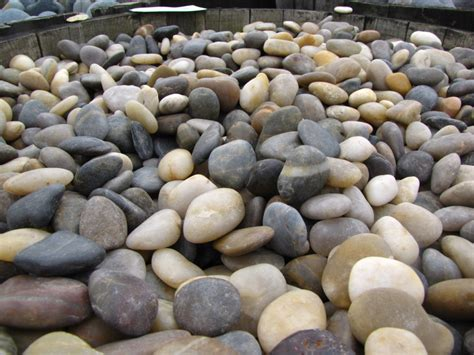 Decorative Rocks For Gardens Decorative Rock Gravels Pavingstone Supply Pavingstone Supply