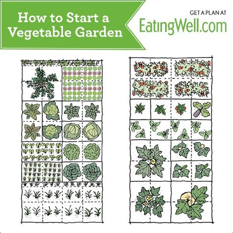 How To Start A Vegetable Garden Future Garden Pinterest Starting A Fruit And Vegetable Garden