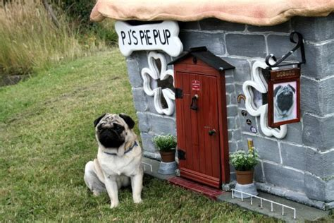 any dogs in the house 10 stylish dog houses