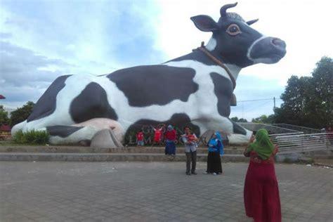 Bibit Sapi Di Jawa Tengah jawa tengah merdeka hanya 20 persen sapi di