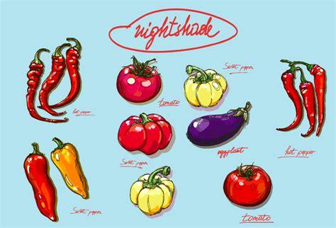 94 vegetables you eat should you eat nightshade vegetables 171 snyder