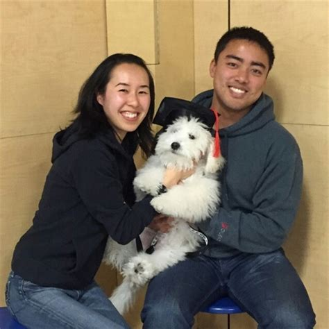 petsmart puppy class graduation from puppy at petsmart san mateo thoughtworthy