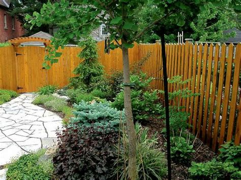 Backyard Trees For Shade by Backyard Shade Outdoor Furniture Design And Ideas