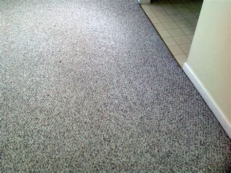 rug cleaning state college pa call today 237 8255