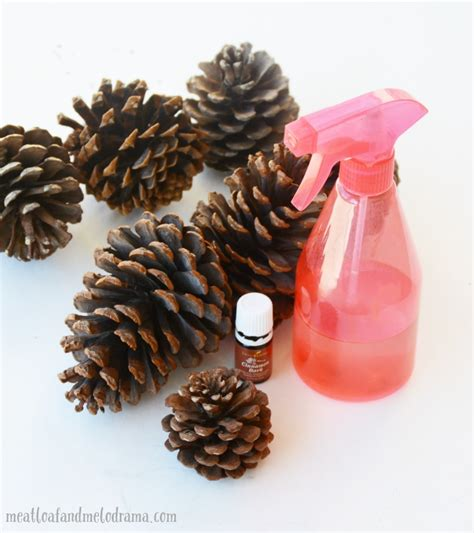 pine scented l oil how to make scented pine cones meatloaf and melodrama