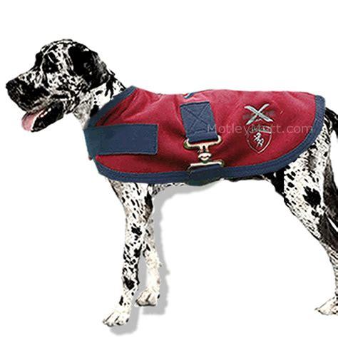 thunder blanket for dogs 173 best great dane images on