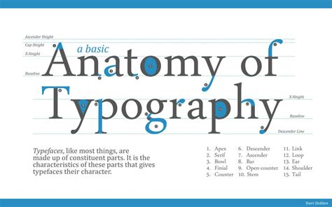 typography anatomy design production mutton initial ideas logo development design practice