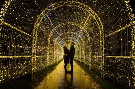 kew gardens leads  list   stunning christmas light