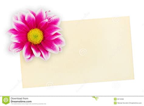 greeting paper card and flower royalty free stock photos