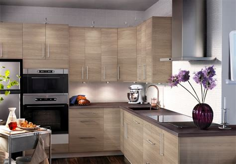 houzz modern kitchen cabinets kitchens
