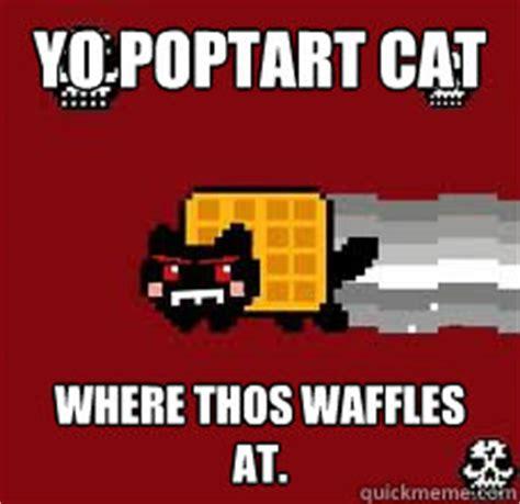 Poptart Meme - yo poptart cat where thos waffles at tacnayn quickmeme