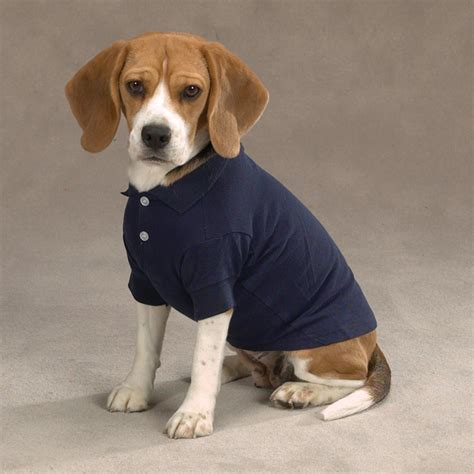 puppy shirts casual canine basic polo shirt navy baxterboo