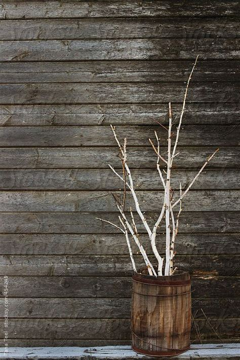 lit branches decorations 25 best ideas about birch branches on open
