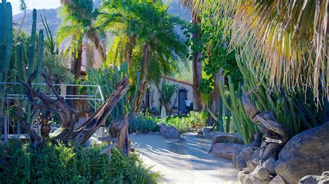 Moorten Botanical Garden And Cactarium In Palm Springs Palm Springs Botanical Garden