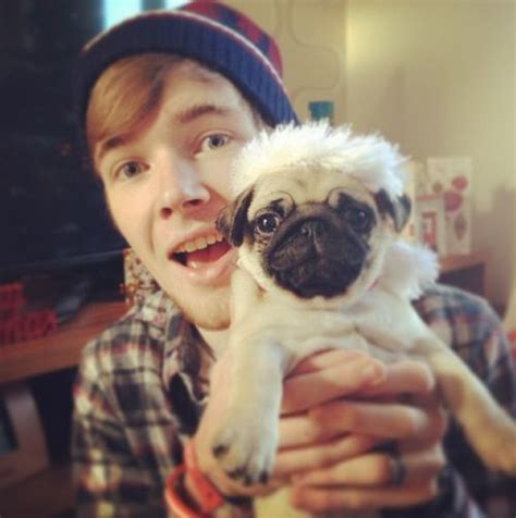 dantdm pugs dantdm and ellie pictures merry and plays