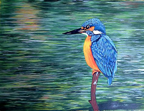 acrylic painting kingfisher kingfisher water acrylic painting the club