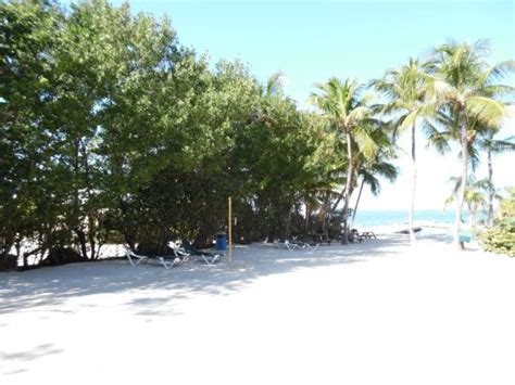 bayside inn key largo bayside in key largo a tropical paradise picture of